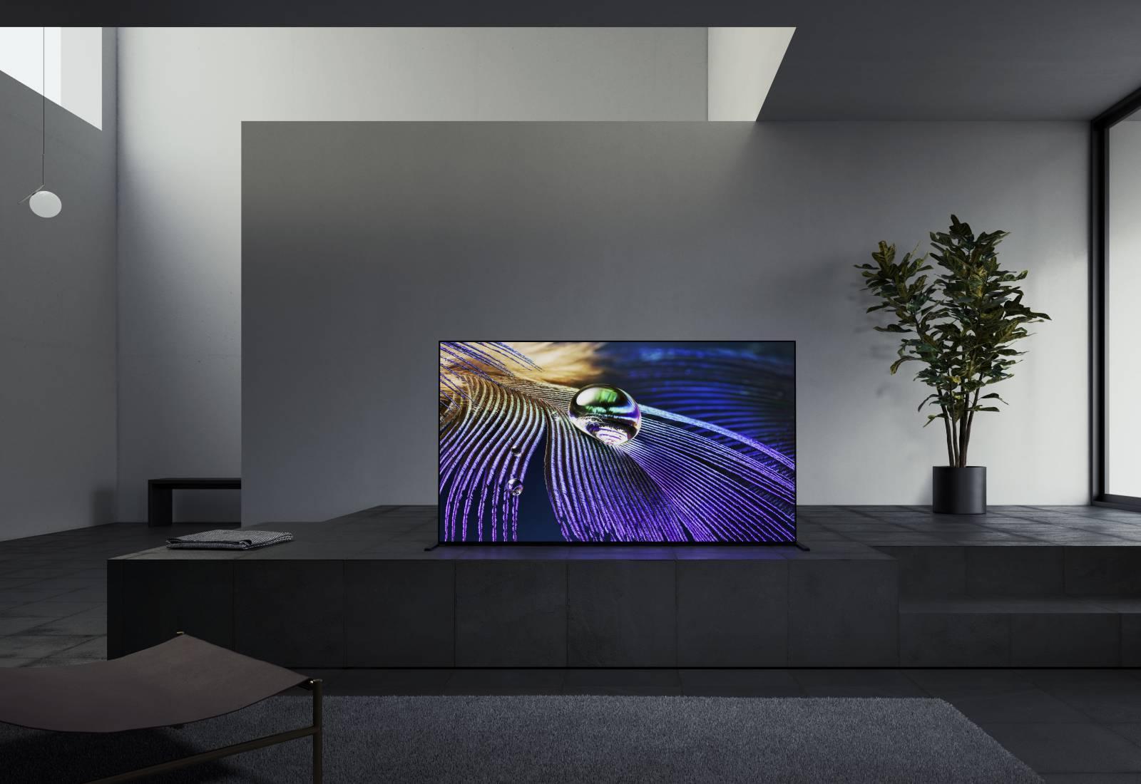 Immagine Il primo tv al mondo con un cervello (quasi) come quello dell